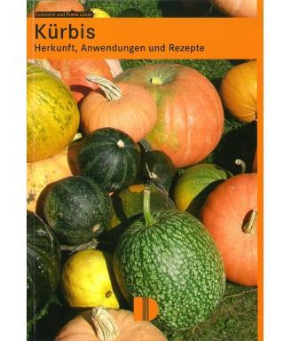 Kürbis - Herkunft, Anwendungen und Rezepte